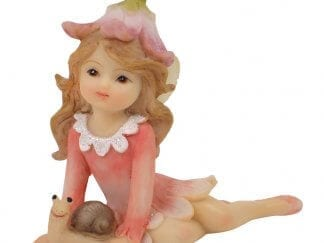 Fairies, Elves, Gnomes and Pixies